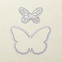 framelit papillon audacieux